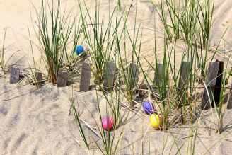 Sandbridge Beach Civic League Annual Easter Egg Hunt 2018